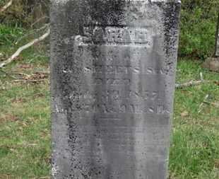 SHEETS, H. - Delaware County, Ohio | H. SHEETS - Ohio Gravestone Photos