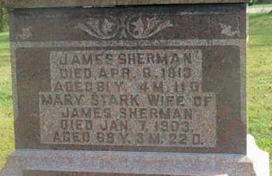 SHERMAN, JAMES - Delaware County, Ohio | JAMES SHERMAN - Ohio Gravestone Photos