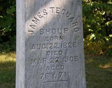 SHOUP, JAMES TECUARD - Delaware County, Ohio   JAMES TECUARD SHOUP - Ohio Gravestone Photos