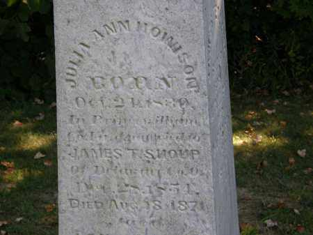 HOWISON SHOUP, JULIA ANN - Delaware County, Ohio | JULIA ANN HOWISON SHOUP - Ohio Gravestone Photos
