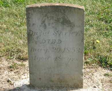 SHRIER, DAVID - Delaware County, Ohio | DAVID SHRIER - Ohio Gravestone Photos