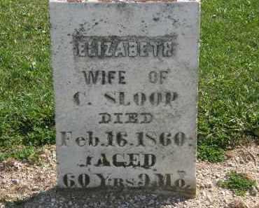 SLOOP, ELIZABETH - Delaware County, Ohio | ELIZABETH SLOOP - Ohio Gravestone Photos