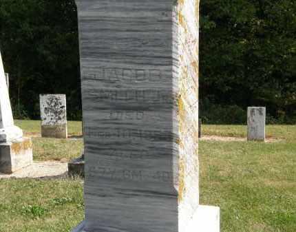 SMITH, JACOB JR. - Delaware County, Ohio | JACOB JR. SMITH - Ohio Gravestone Photos