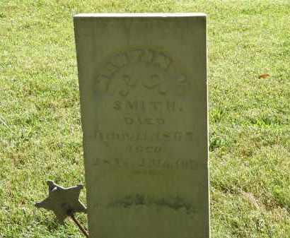 SMITH, MARTIN V. - Delaware County, Ohio | MARTIN V. SMITH - Ohio Gravestone Photos