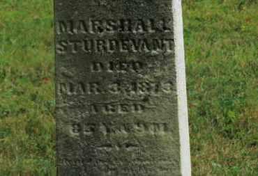 STURDEVANT, MARSHALL - Delaware County, Ohio | MARSHALL STURDEVANT - Ohio Gravestone Photos