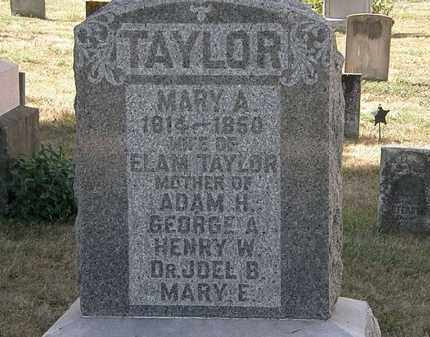 TAYLOR, MARY A. - Delaware County, Ohio | MARY A. TAYLOR - Ohio Gravestone Photos