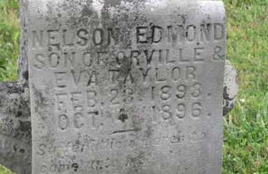 TAYLOR, ORVILLE - Delaware County, Ohio | ORVILLE TAYLOR - Ohio Gravestone Photos