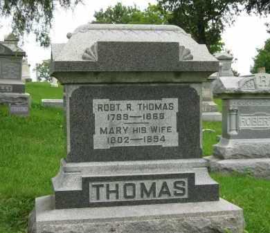 THOMAS, MARY - Delaware County, Ohio | MARY THOMAS - Ohio Gravestone Photos