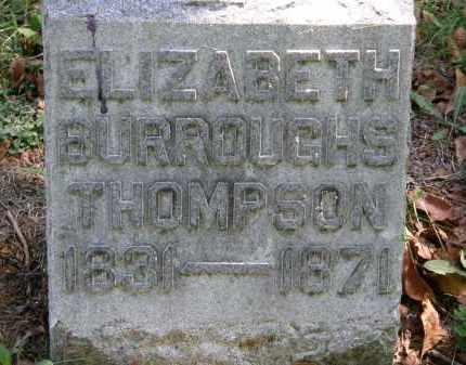 BURROUGHS THOMPSON, ELIZABETH - Delaware County, Ohio | ELIZABETH BURROUGHS THOMPSON - Ohio Gravestone Photos