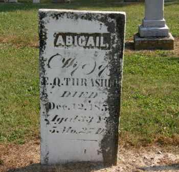 THRASHER, ABIGAIL - Delaware County, Ohio | ABIGAIL THRASHER - Ohio Gravestone Photos