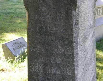 TYLER, LEWIS - Delaware County, Ohio | LEWIS TYLER - Ohio Gravestone Photos
