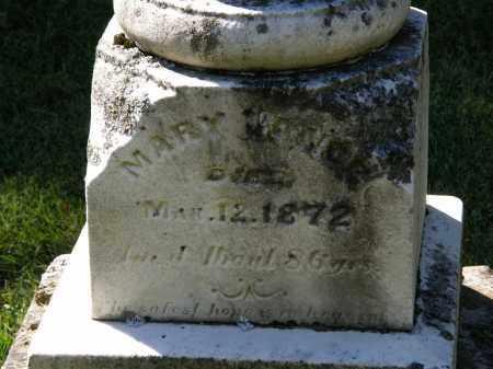 VANCE, MARY - Delaware County, Ohio | MARY VANCE - Ohio Gravestone Photos