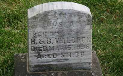 WALDRON, HOSEA - Delaware County, Ohio | HOSEA WALDRON - Ohio Gravestone Photos