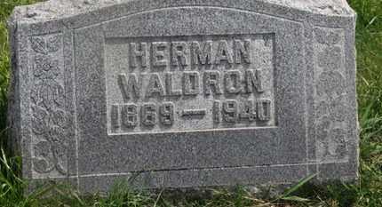 WALDRON, HERMAN - Delaware County, Ohio | HERMAN WALDRON - Ohio Gravestone Photos