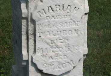 WALDRON, MARIAH - Delaware County, Ohio | MARIAH WALDRON - Ohio Gravestone Photos