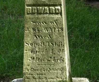 WATTS, L. - Delaware County, Ohio   L. WATTS - Ohio Gravestone Photos