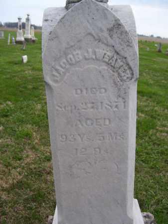 WEAVER, JACOB - Delaware County, Ohio | JACOB WEAVER - Ohio Gravestone Photos
