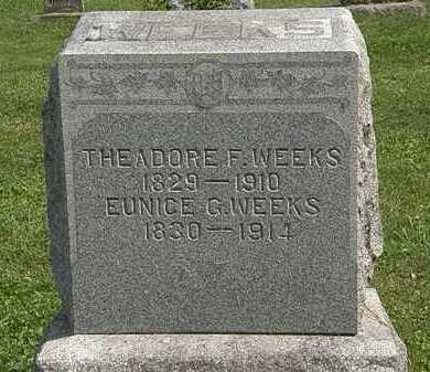 WEEKS, THEODORE F. - Delaware County, Ohio | THEODORE F. WEEKS - Ohio Gravestone Photos