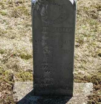 WEISER, JOHN - Delaware County, Ohio | JOHN WEISER - Ohio Gravestone Photos