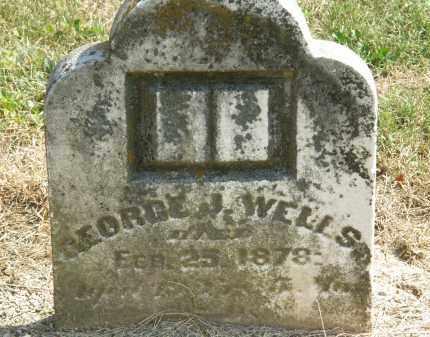 WELLS, GEORGE J. - Delaware County, Ohio   GEORGE J. WELLS - Ohio Gravestone Photos