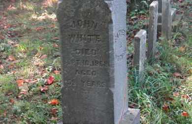 WHITE, JOHN - Delaware County, Ohio | JOHN WHITE - Ohio Gravestone Photos