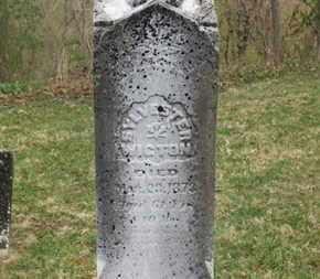 WIGTON, SYLVESTER - Delaware County, Ohio   SYLVESTER WIGTON - Ohio Gravestone Photos