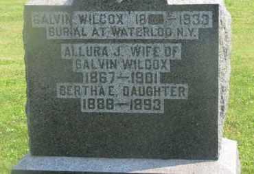 WILCOX, ALLURA J. - Delaware County, Ohio | ALLURA J. WILCOX - Ohio Gravestone Photos