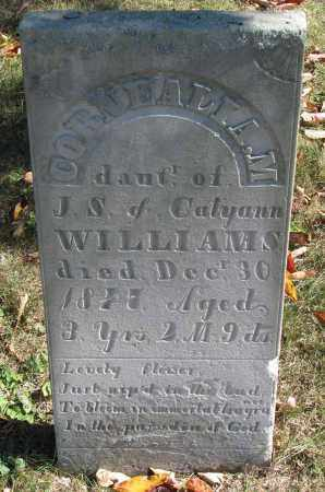 WILLIAMS, CORNEALIA M. - Delaware County, Ohio | CORNEALIA M. WILLIAMS - Ohio Gravestone Photos