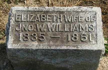 WILLIAMS, ELIZABETH - Delaware County, Ohio | ELIZABETH WILLIAMS - Ohio Gravestone Photos
