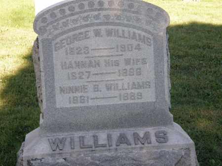WILLIAMS, HANNAH - Delaware County, Ohio   HANNAH WILLIAMS - Ohio Gravestone Photos