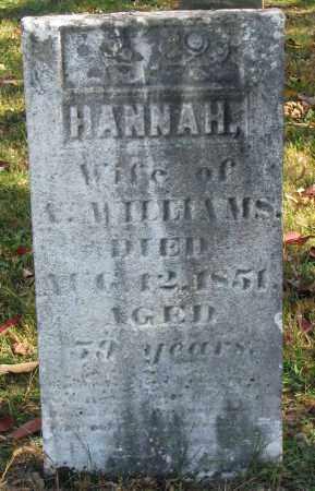 WILLIAMS, HANNAH - Delaware County, Ohio | HANNAH WILLIAMS - Ohio Gravestone Photos