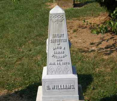 WILLIAMS, INFANT DAUGHTER - Delaware County, Ohio | INFANT DAUGHTER WILLIAMS - Ohio Gravestone Photos