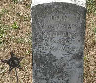 WILLIAMS, JOHN - Delaware County, Ohio   JOHN WILLIAMS - Ohio Gravestone Photos