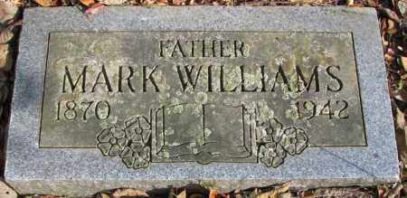 WILLIAMS, MARK - Delaware County, Ohio | MARK WILLIAMS - Ohio Gravestone Photos