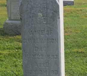 WILLIAMSON, S. - Delaware County, Ohio | S. WILLIAMSON - Ohio Gravestone Photos