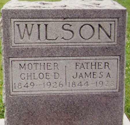 BAKER WILSON, CHLOE D. - Delaware County, Ohio   CHLOE D. BAKER WILSON - Ohio Gravestone Photos