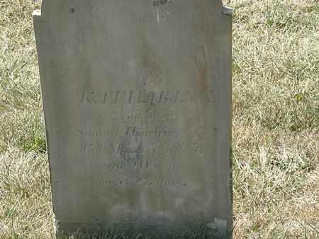 WORLINE, SAMUEL - Delaware County, Ohio | SAMUEL WORLINE - Ohio Gravestone Photos