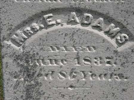 ADAMS, E. - Erie County, Ohio | E. ADAMS - Ohio Gravestone Photos