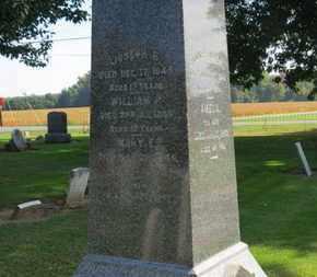 ANDREWS, WILLIAM P. - Erie County, Ohio   WILLIAM P. ANDREWS - Ohio Gravestone Photos