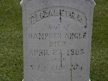 ANGLE, ELIZABETH A. - Erie County, Ohio   ELIZABETH A. ANGLE - Ohio Gravestone Photos