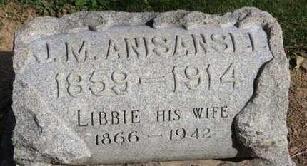 ANISANSEL, J.M. - Erie County, Ohio | J.M. ANISANSEL - Ohio Gravestone Photos