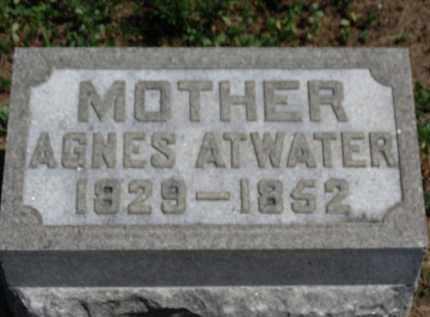 ATWATER, AGNES - Erie County, Ohio | AGNES ATWATER - Ohio Gravestone Photos