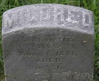 AYRES, MILDRED - Erie County, Ohio | MILDRED AYRES - Ohio Gravestone Photos