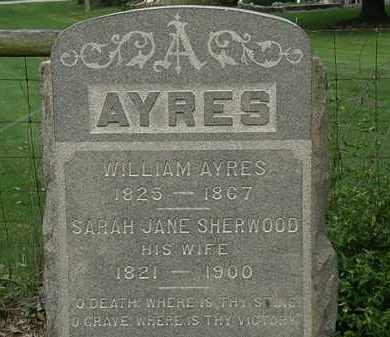 AYRES, WILLIAM - Erie County, Ohio | WILLIAM AYRES - Ohio Gravestone Photos