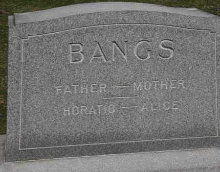 BANGS, ALICE - Erie County, Ohio | ALICE BANGS - Ohio Gravestone Photos