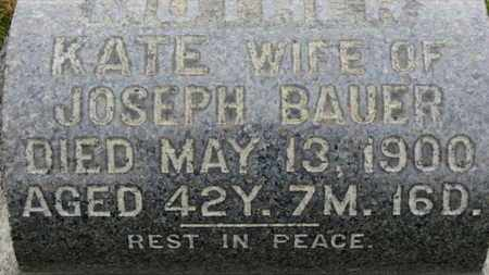 BAUER, KATIE - Erie County, Ohio | KATIE BAUER - Ohio Gravestone Photos
