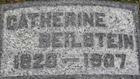 BEILSTEIN, CATHERINE - Erie County, Ohio | CATHERINE BEILSTEIN - Ohio Gravestone Photos