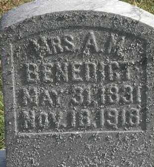 BENEDICT, A.M. - Erie County, Ohio   A.M. BENEDICT - Ohio Gravestone Photos