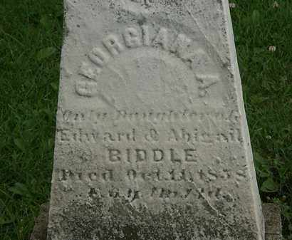BIDDLE, ABIGAIL - Erie County, Ohio | ABIGAIL BIDDLE - Ohio Gravestone Photos