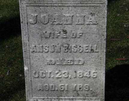 BISSELL, JOANNA - Erie County, Ohio | JOANNA BISSELL - Ohio Gravestone Photos